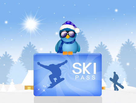 funny illustration of skipass