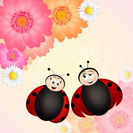 couple of ladybugs Stock Photo