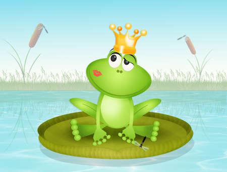 funny frog on waterlily Stok Fotoğraf