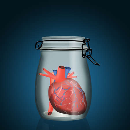 heart closed in the jar for organ donation