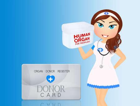 illustration of nurse with human organs