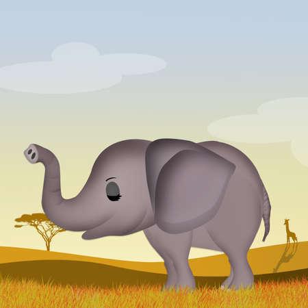 elephant in African landscape Stockfoto