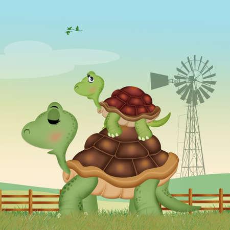 illustration of turtles