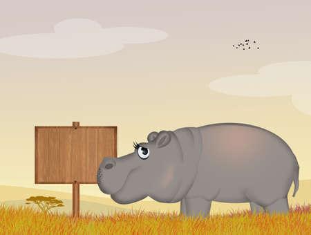 illustration of hippo Stockfoto