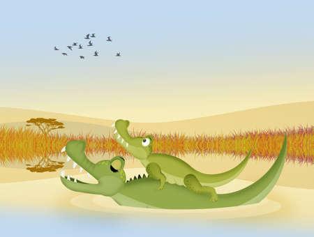 alligators in the river