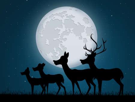 reindeer in the moonlight Stockfoto
