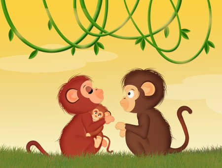 funny monkeys in the jungle