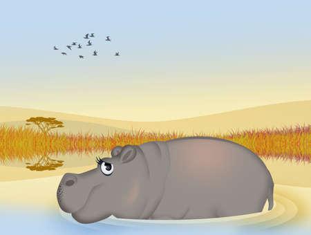 hippo in the water Stockfoto