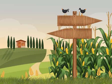 illustration of corn fields