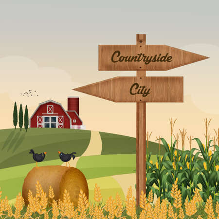 countryside or city