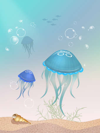 jellyfishes in the ocean