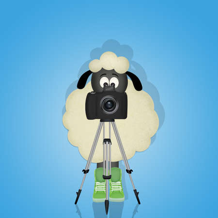 sheep with camera on tripod Stock Photo