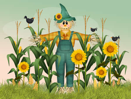 scarecrow in the field of panicles Stockfoto
