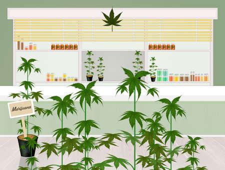 cannabis store concept vector illustration
