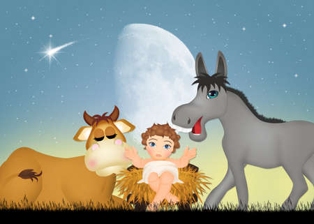Jesus in the manger with the ox and the donkey