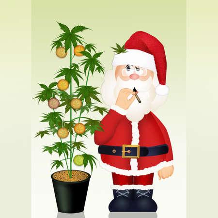 Santa Claus grows marijuana