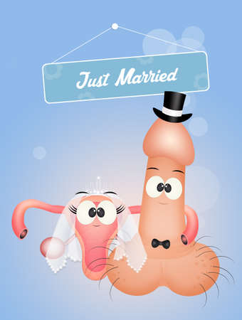 the vagina and the penis get married vector illustration Stok Fotoğraf