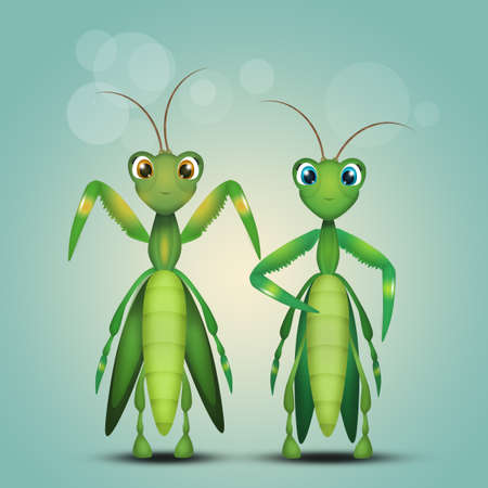mantis couple Stock Photo