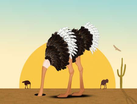 autruche avec sa tête dans le sable dans le désert