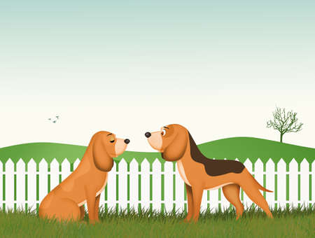 funny illustration of dog couple
