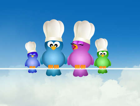 birds with chef hat