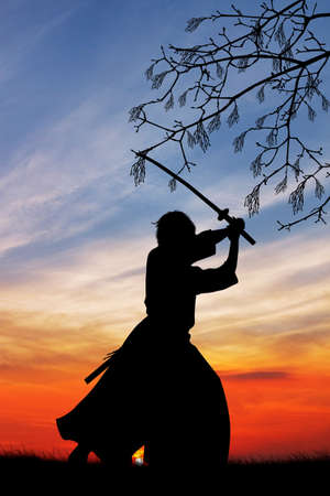 Samurai with sword at sunset 版權商用圖片