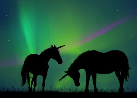 two unicorns in the northern lights