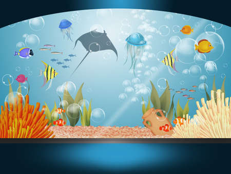 illustration of aquarium