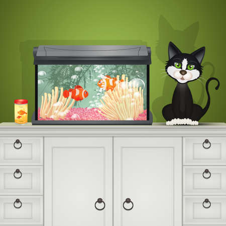 fish aquarium and cat
