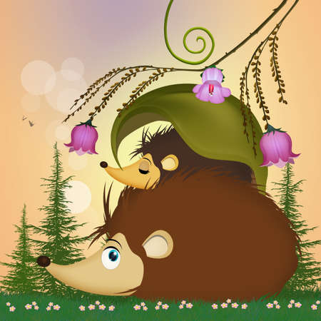little hedgehog in the grass
