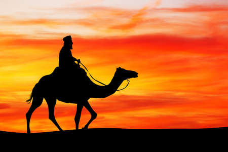Arab man on camel at sunset
