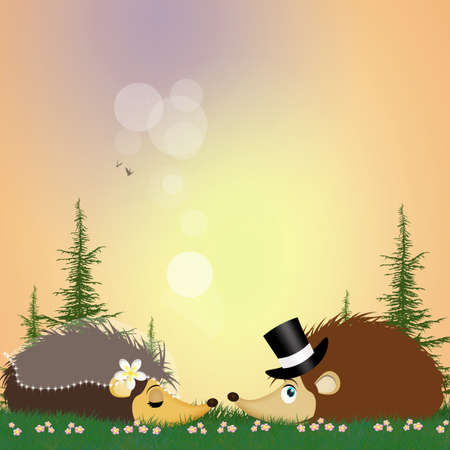 two hedgehogs getting married