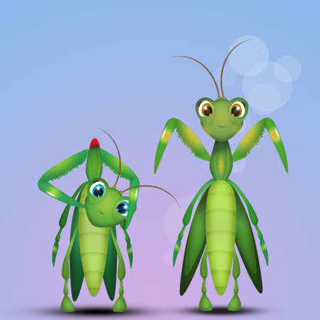 illustration of mantis couple