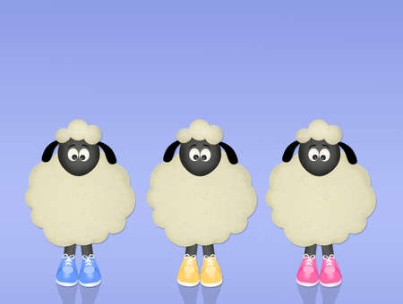 funny sheeps with shoes