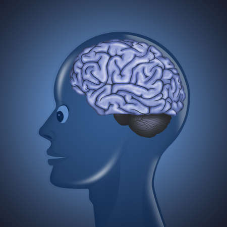 illustration of human brain in the head Reklamní fotografie