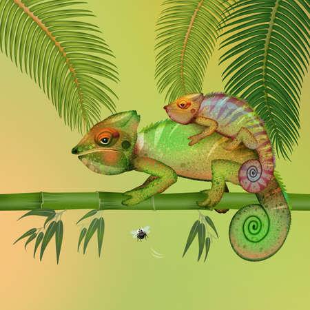 funny illustration of chameleons