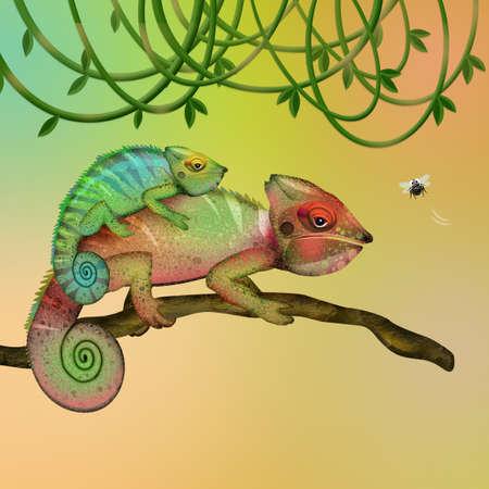 illustration of chameleons on branch