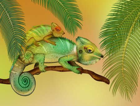 illustration of chameleons in the forest