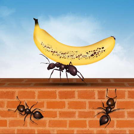 illustration of ant with banana Reklamní fotografie