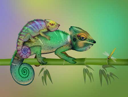 illustration of two camouflaged chameleons