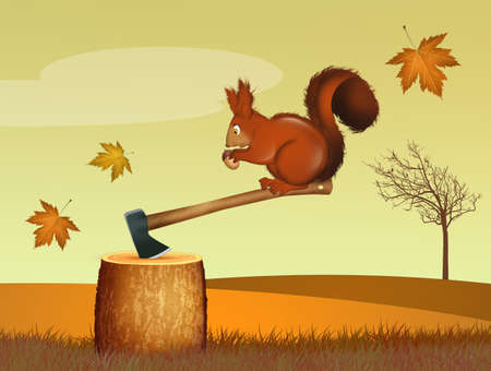 illustration of squirrel in the forest