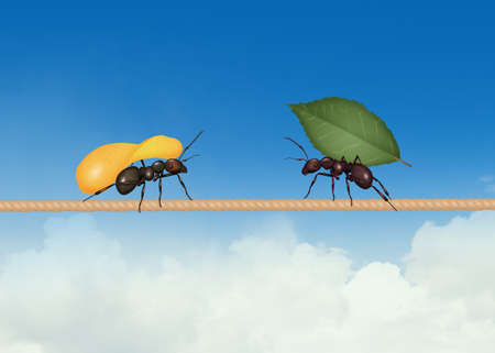 two ants with potato and leaf Imagens