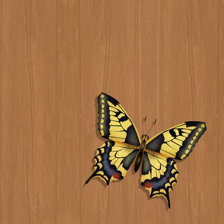 illustration of the swallowtail Zdjęcie Seryjne - 131445558
