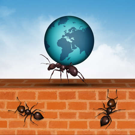 concept of ants strength
