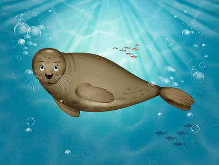 illustration of seal in the ocean