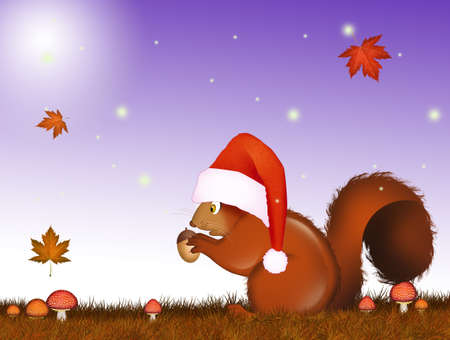 illustration of squirrel at Christmas Stok Fotoğraf