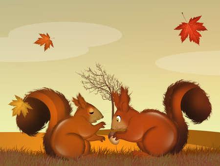 squirrels couple