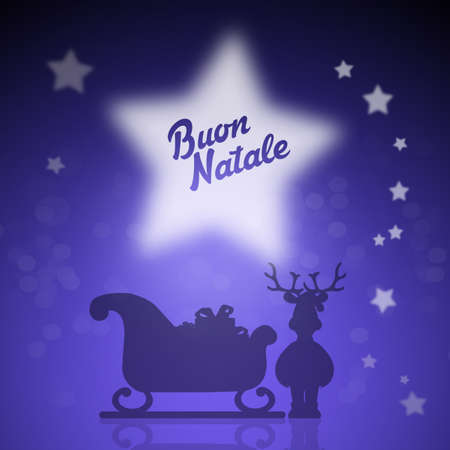 Christmas sleigh 版權商用圖片