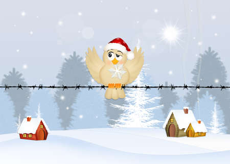 bird with snowflake in winter
