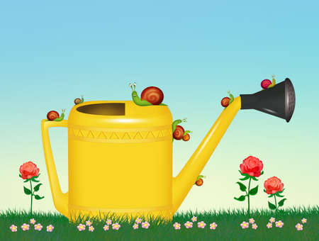 snails on watering can